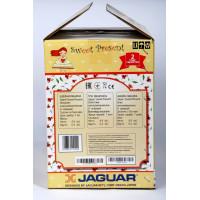 Швейная машина Jaguar Sweet Present
